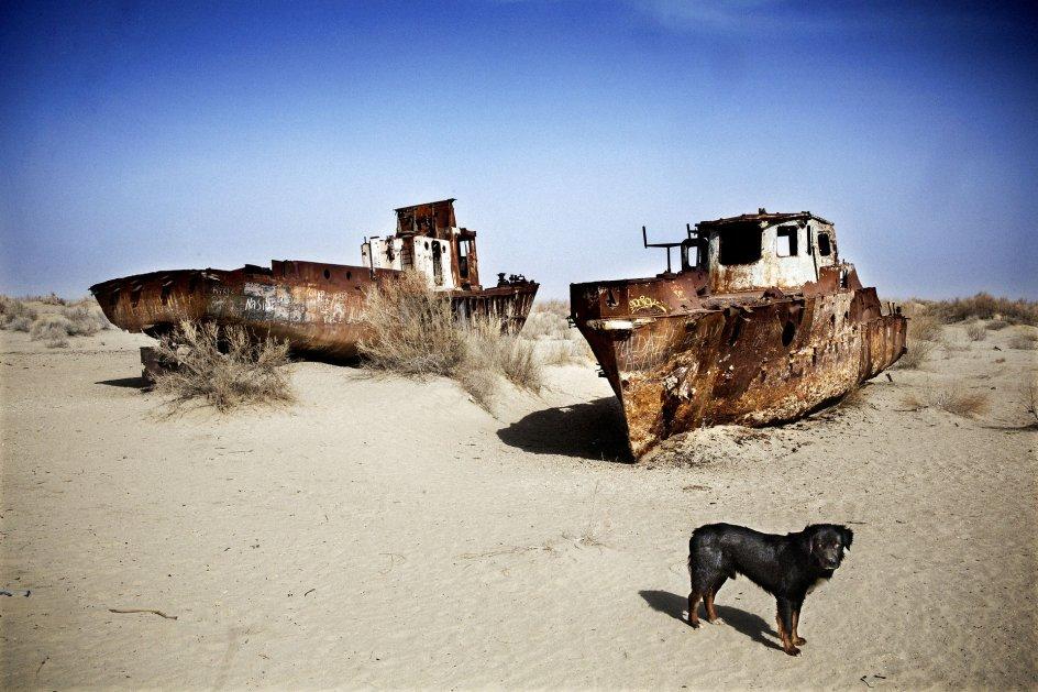 Billede af de efterladte både fra den nu udtørrede Aralsø. Aralsøen er på grund af udtørring blevet splittet op i tre mindre søer.