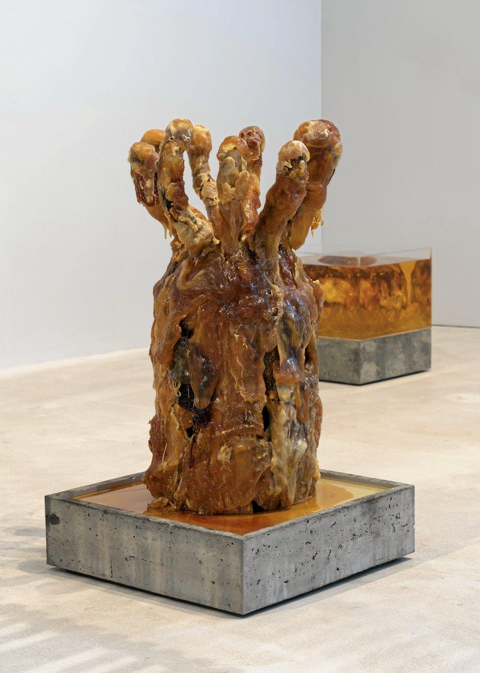 Silas Inoue (født 1981), der forholder sig til klimakrisen, dyrker nye skulpturformer via mugsvampe, sukker og fritureolie. Hans organiske skulpturer rummer en anderledes og syret, men fascinerende skønhed. –