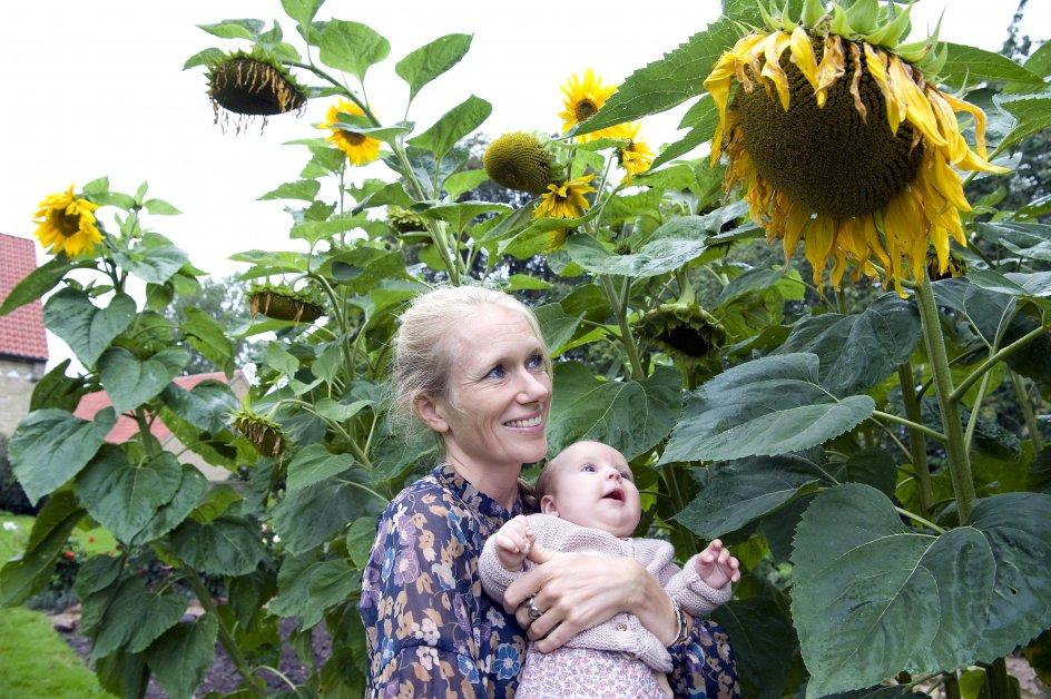 Sognepræst Marie Høgh med sin datter Lillen. Når de to er i haven, kan solsikkernes gule hoveder få den lille datter til at smile, selv når hun er allermest ked af det.