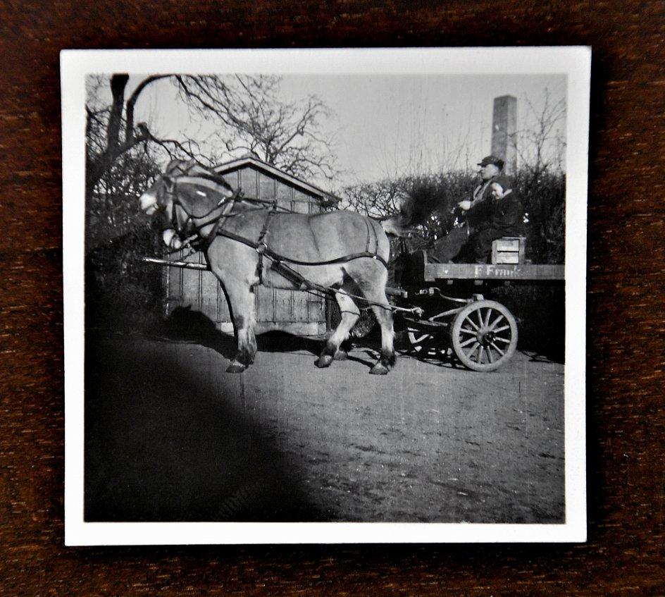 Leon Frank sammen med sin far, Flemming Frank, i hestevognen for at indsamle flasker til rensning i familie-virksomheden i Aarhus-bydelen Christiansbjerg. Billedet er taget i slutningen af 1940'erne. – Privatfoto.