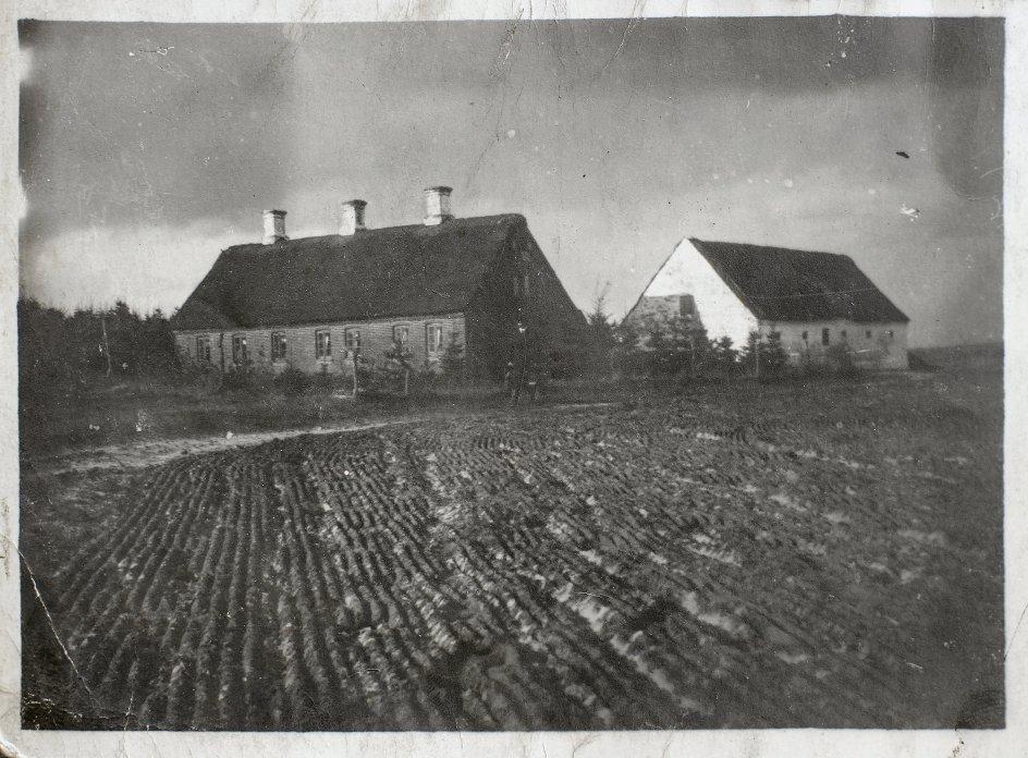 Gården her, der lå i Engesvang, blev drevet af Philip Frederik Bildskov Nielsen i sidste halvdel af 1800-tallet. Hans oldeforældre kom fra Sydtyskland for at være med til at opdyrke den jyske hede, og selv blev han også i området. – Privatfoto.
