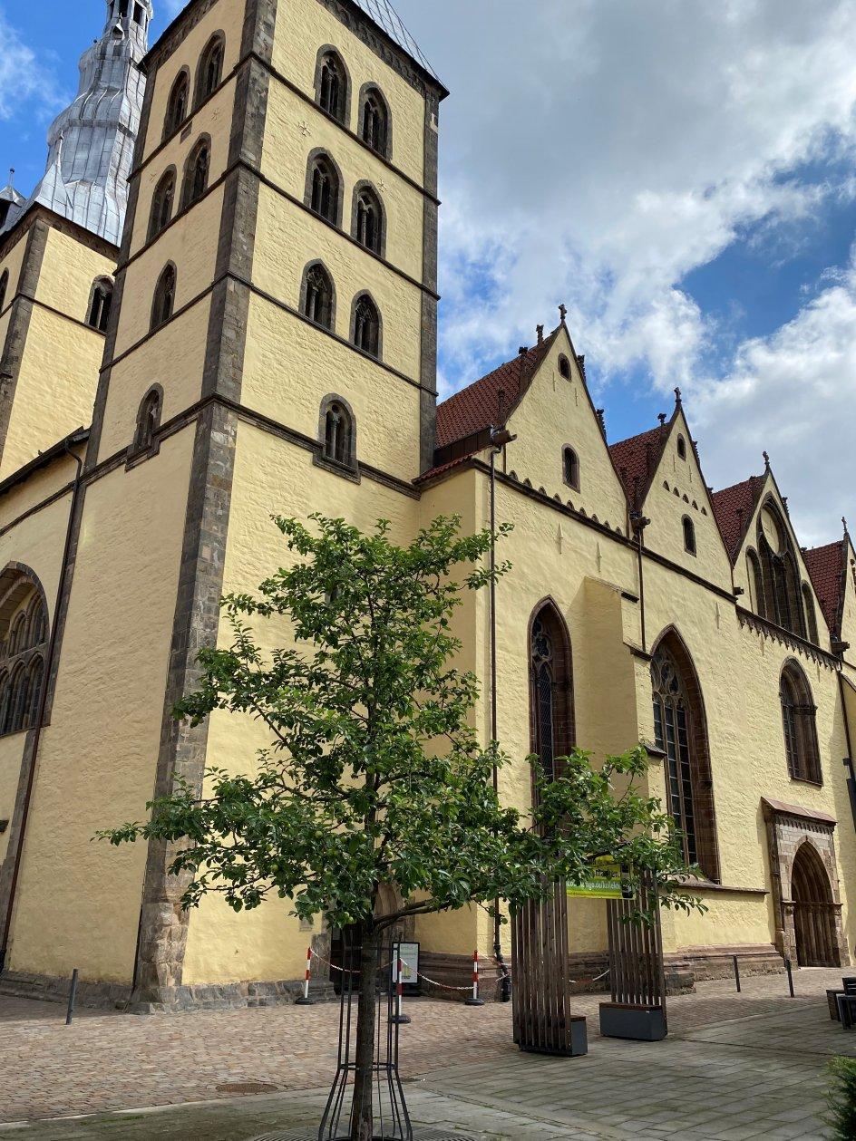 """Dette billede forestiller St. Nicolai kirke i Lemgo i delstaten Nordrhein-Westfalen i Tyskland og det æbletræ, der er plantet foran kirken. Fotografen skriver med henvisning til et Luther-citat: """"På trods af en pandemi og en delstat, der har nødretstilstand på grund af oversvømmelser forårsaget af klimaforandringer, minder Luther os om at plante et træ i dag. Og det har man så gjort her."""""""