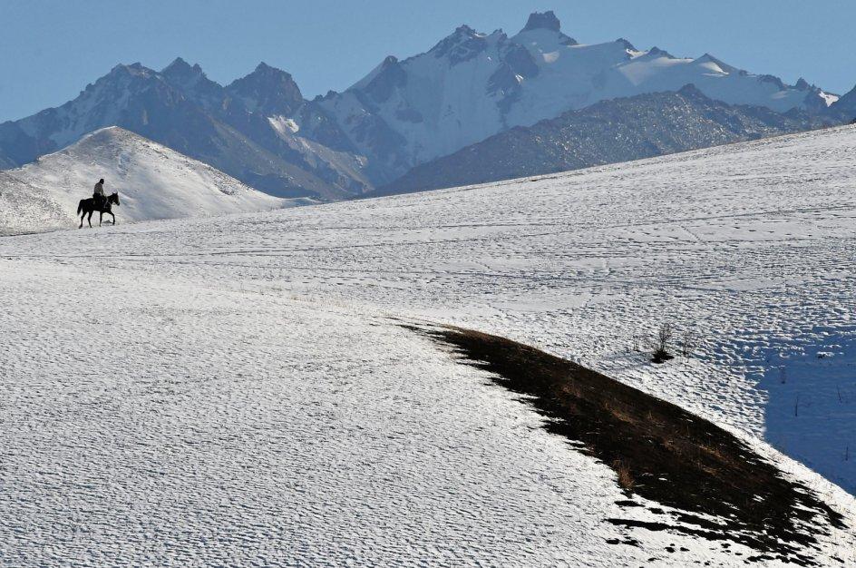 I det bjergrige land Kirgisistan, der ligger i Centralasien, er en rytter her fotograferet i færd med at bestige en bjergtop omkring 20 kilometer fra hovedstaden Bisjkek. – Foto: Vyacheslav Oseledko/AFP/Ritzau Scanpix.