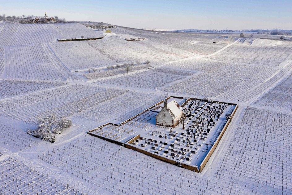 Frankrig set fra luften. I hvert fald den nordøstligt beliggende by Wolxheim, hvor Saint-Denis kapellet og de omgivende vinmarker i sidste uge skinnede hvidt efter kraftigt snevejr. – Foto: Patrick Hertzog/AFP/Ritzau Scanpix.