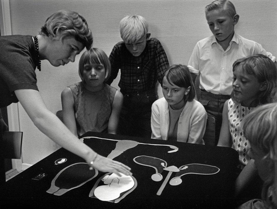 I denne uge er det Uge Sex-tema i folkeskolen. Seksualundervisning for børn har været debatteret heftigt gennem tiden i flere omgange og igen i 1960'erne med det voksende frisind, der banede vejen for at gøre undervisning i seksualitet obligatorisk i folkeskolen efter 1970. Her får en gruppe unge i 1966 af en lærer forklaret, hvordan den menneskelige forplantning fungerer, og hvordan man kan undgå uønskede graviditeter. – Foto: Peer Pedersen/Ritzau Scanpix.