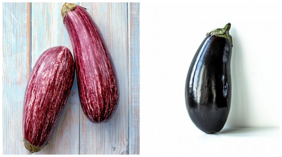 Den mørkviolette ovale aubergine er mest kendt, men auberginer findes også i kuglerunde og i farverne lyslilla, hvide og gule.