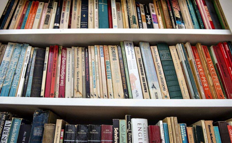 """""""Mennesket finder fryd ved at tænke på sin egen undergang. Vi kan simpelthen lide at se det på tv og læse om det i litteraturen,"""" siger Søren Staal Balslev, ph.d. i litteratur."""