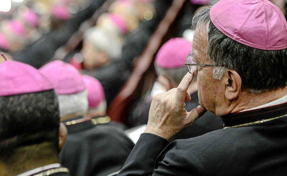 Gejstlige i farverige dragter vil præge billedet, når den katolske kirkes top mødes fra på søndag i Rom. Her ses et stort kirkemøde i 2012 under pave Benedikt XVI. -
