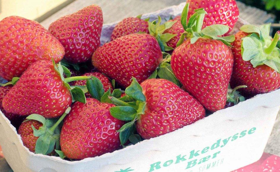 Har man ikke have med jordbær, er der heldigvis mange små og store gårde med pluk-selv og gårdbutik. Rokkedyssegård (rokkedysse.dk) ligger i Nordsjælland.