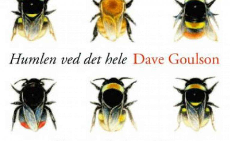 """""""Goulson har meget på hjerte, og med sit præcise og underholdende sprog fremkalder han billeder af humlebier, så man både kan se dem og høre de store, lodne dyr brumme omkring,"""" skriver vores anmelder om bestseller bog, som nu er udkommet på dansk."""