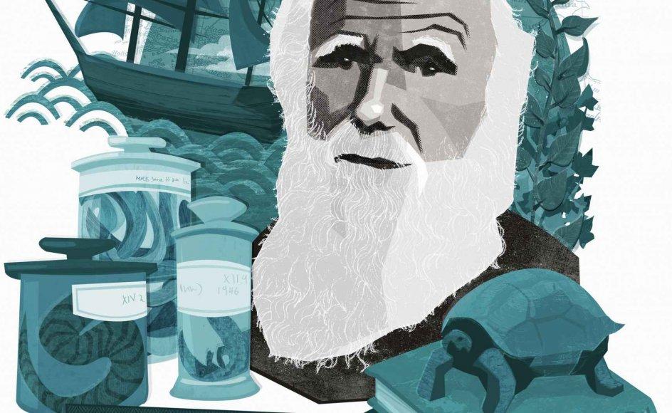 """Det tyrkiske uddannelsesministerium vil skrive Darwin ud af undervisningsbøger til landets gymnasier, og begreber som sekularisme, genfødsel og ateisme skal ifølge ministeriet omtales som """"problematiske overbevisninger"""" og """"sygdomme"""" i religionsbøger, skriver den østrigske avis Die Presse."""