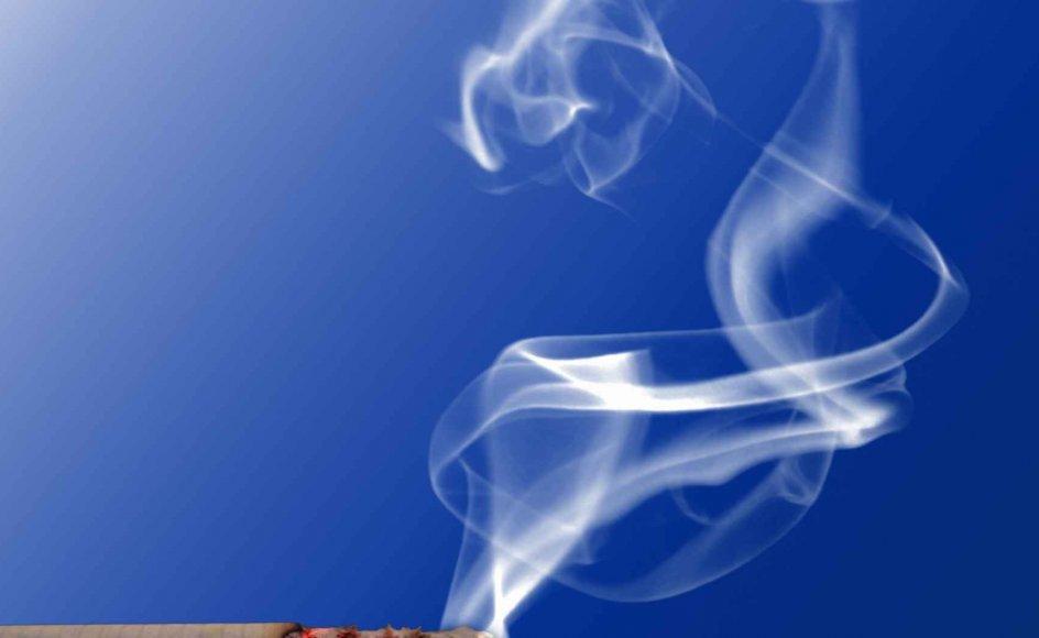 Se her, hvor mange år cigaretterne skærer af den gennemsnitlige levetid. -