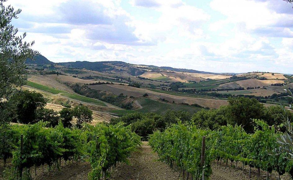 Toscana er et utrolig smukt landområde, hvor man oplever storslået natur og smukke byer. --