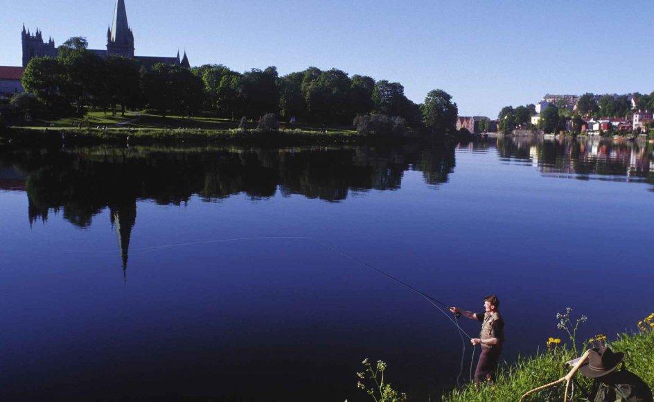 Et blik ud over det idylliske Trondheim. Nidarosdomen ses bagest til venstre. --