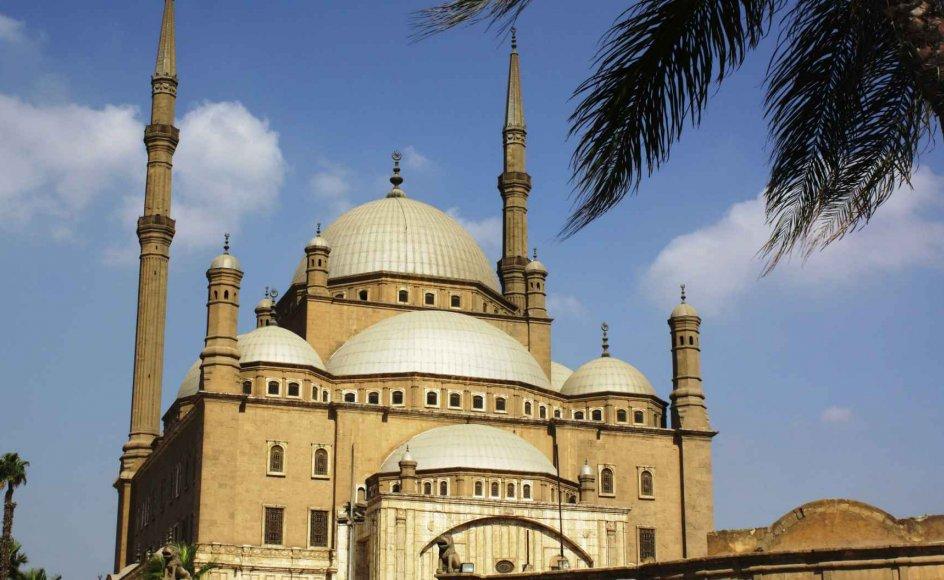 På rejsen bliver der mulighed for at se forskellige templer og moskeér. Her er det Alabastermoskéen i Kairo. --
