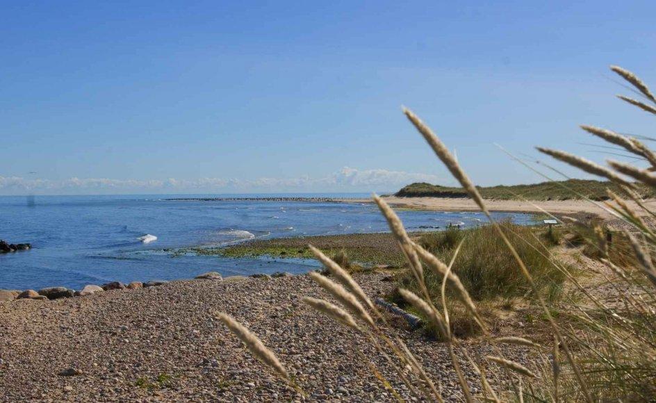 """Mange forfattere bruger øer i deres skriverier. Her ses Anholt som Vagn Lundbye brugte i romanen """"Tilbage til Anholt"""" i 1978."""