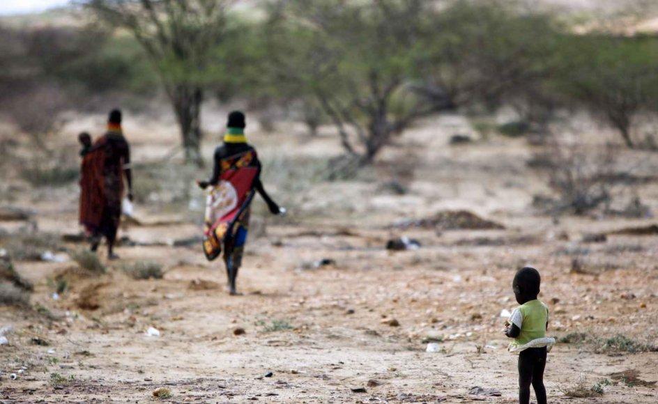 Antallet af krise-ramte mennesker og underernærede børn i Somalia vokser kun. På 20. år har landet ingen central regering