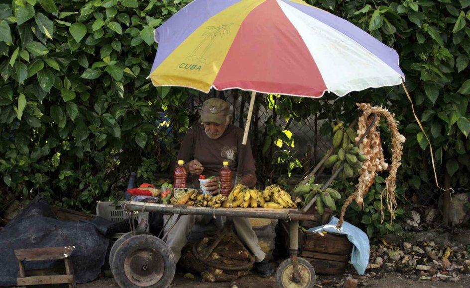 Cuba er under store forandringer i disse år, hvor den cubanske præsident, Raul Castro, forsøger at liberalisere økonomien. Blandt andet er der et stort behov for at få landmændene til at producere flere fødevarer, så Cuba ikke skal bruge så mange penge på at købe mad i udlandet. Her venter en gadehandler i Havana på kunder. –