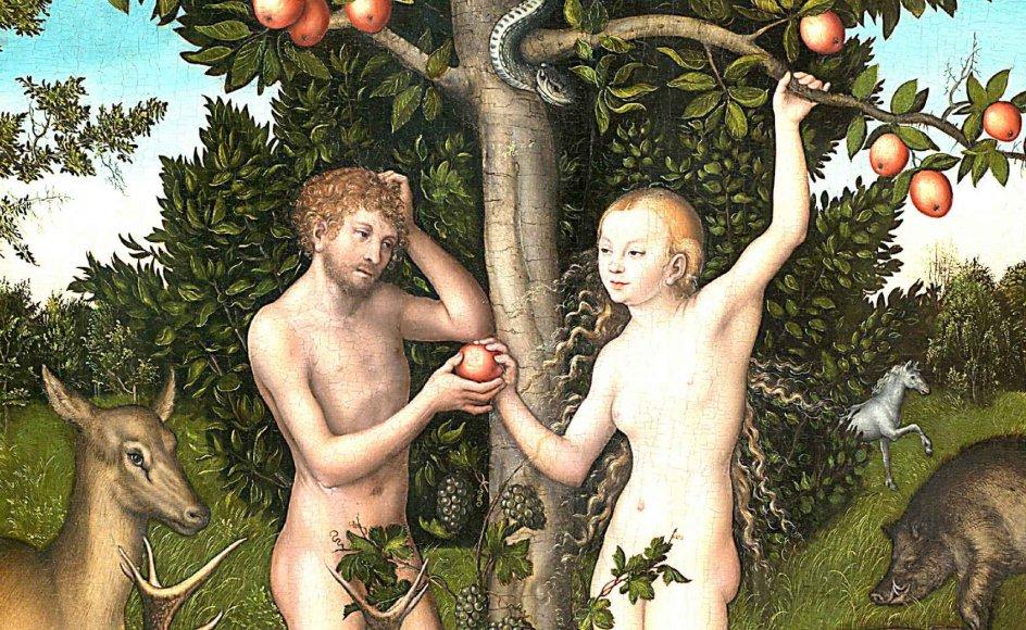 Russiske biologer mener, at Sieversii-æblet er alle æblers forfædre – helt tilbage til æblet, som Eva spiste af i Edens Have. – Arkivfoto.