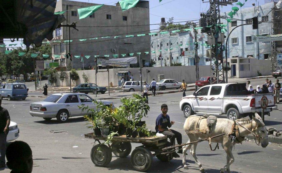 Et æsel trækker en vogn i den centrale del af Gaza By. Ifølge en FN-rapport står Gaza over for mangel på mad, vand, hospitalsfaciliteter og meget andet, samtidig med at befolkningen vokser kraftigt. –