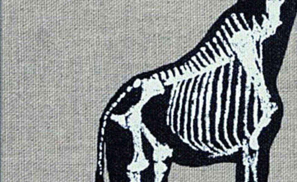 """Judith Schalansky: Giraffens hals"""". Oversat af Anette Petersen. 279,95 kroner. Forlaget Vandkunsten"""