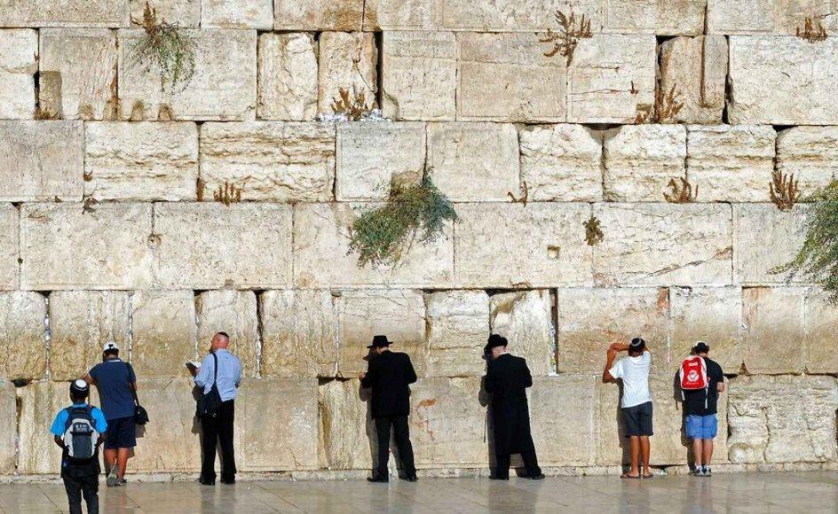 Ny kristen bevægelse i Israel vil forsøge at fremme samarbejdet med den jødiske del af landet. Billedet viser jøder ved Vestmuren i Jerusalem.