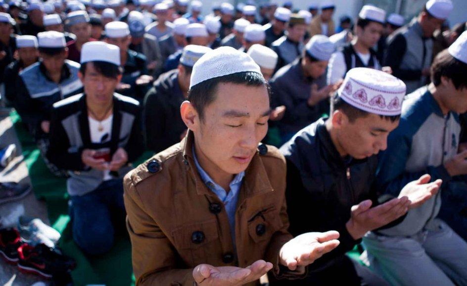 Kinesiske muslimer beder. Både kristendom, islam og buddhisme blomstrer i Kina.