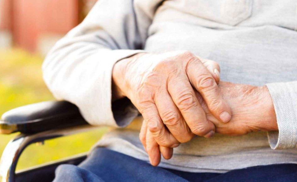 For nogle ældre mennesker går ensomheden så dybt ind i sjælen, at de trækker sig tilbage, bliver angste og ikke selv har overskud til at tage kontakt, siger chefkonsulent i Ældre Sagen. Samtidig er manglen på besøgsvenner stadig et udtalt problem.
