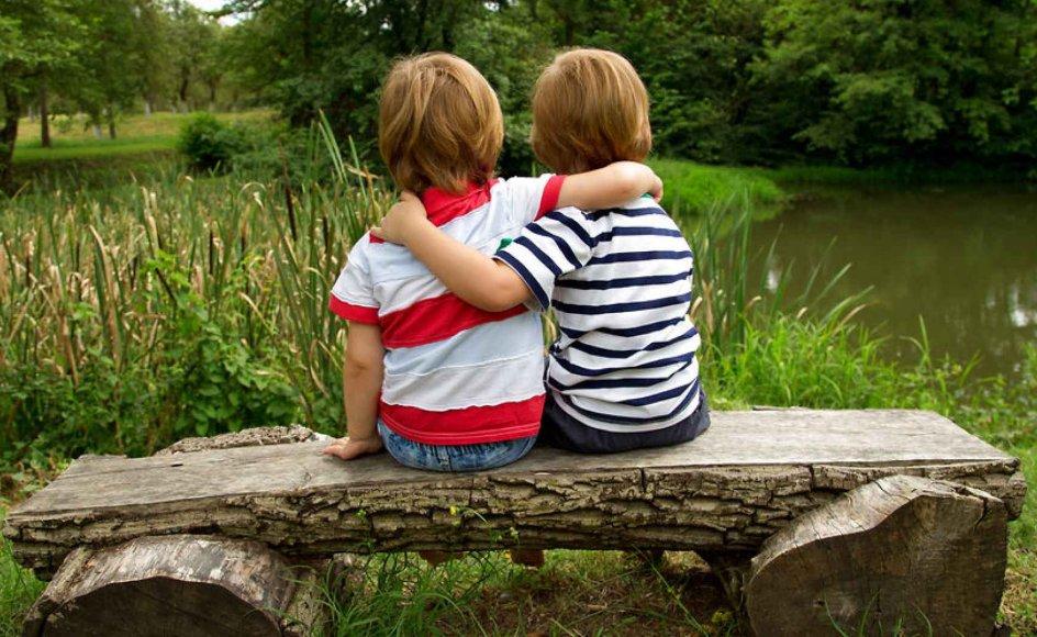 Tvillinger deler, uanset om de er enæggede eller tveæggede, miljø og kultur under deres opvækst. De er blevet skældt ud, rost og opdraget af de samme forældre. Derfor må de enæggede tvillingpars større tilbøjelighed til begge at blive bloddonorer forklares af de gener, de har tilfælles, fortæller overlæge.