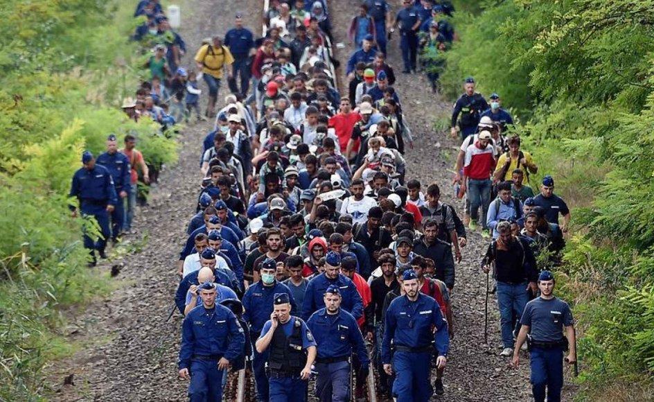 Flygtninge bliver eskorteret tilbage af politibetjente, efter at de brød ud fra et migrantcenter ved grænsen mellem Ungarn og Serbien.