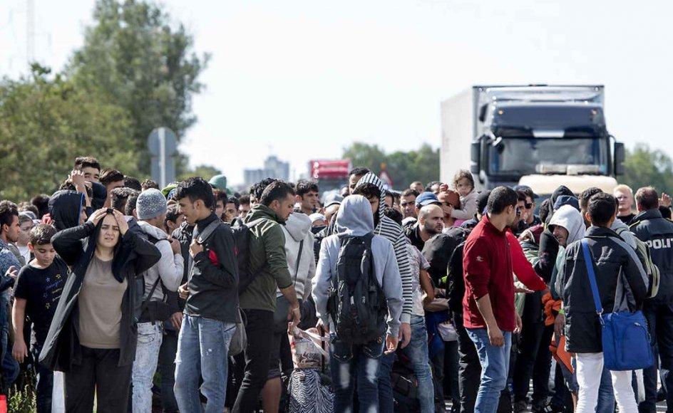 Mandag d. 7. september gik knap 200 flygtninge langs Sydmotorvejen ved Rødby på vej mod Sverige.