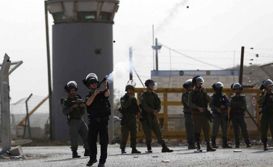 Man må håbe, at Israel en dag rejser sig i en smuk genfødsel og trækker sig definitivt tilbage fra palæstinensiske territorier, opgiver sin besættelsesmagt og derpå river mure og pigtrådshegn ned og erstatter den palæstinensiske ejendom og alt det land, man har stjålet, skriver debattør.