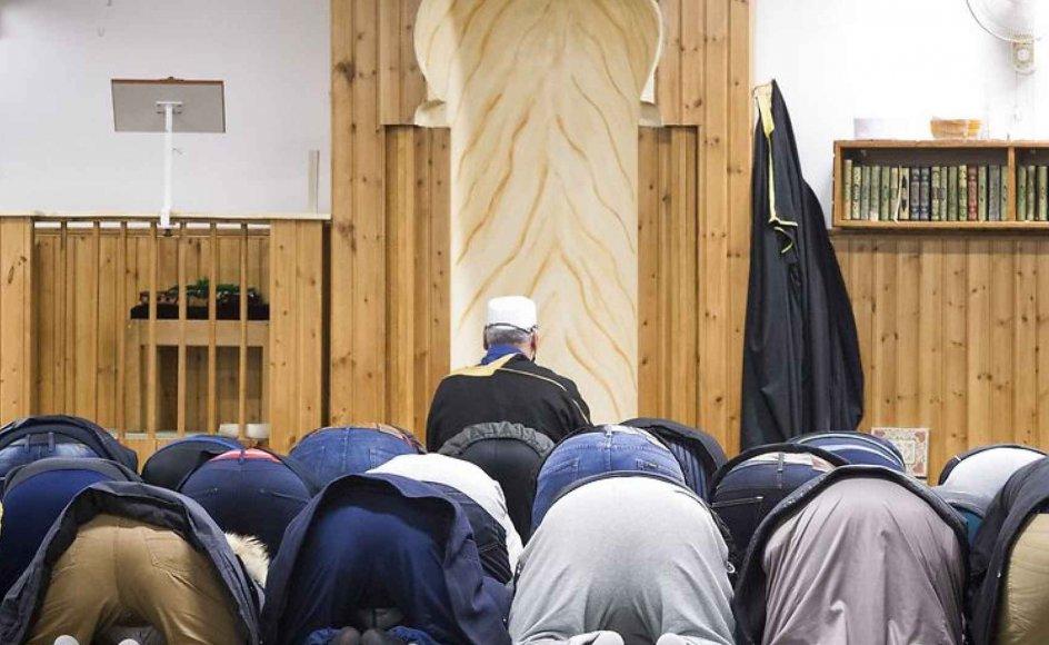 En undersøgelse af landets moskéer ville sikkert vise, at ni ud af ti moskéer er helt almindelige. Jo længere muslimer er i Danmark, jo mere kommer muslimer til at opføre sig som de fleste andre danskere, mener forsker. Arkivfoto fra Fredens Moske i bazar vest.