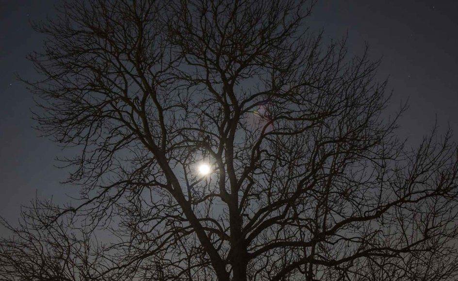 Som følge af øget udendørs belysning er nattehimlen blevet flere hundrede gange lysere end tidligere, så man kun ganske få steder i landet kan se andet end en brøkdel af de synlige stjerner.