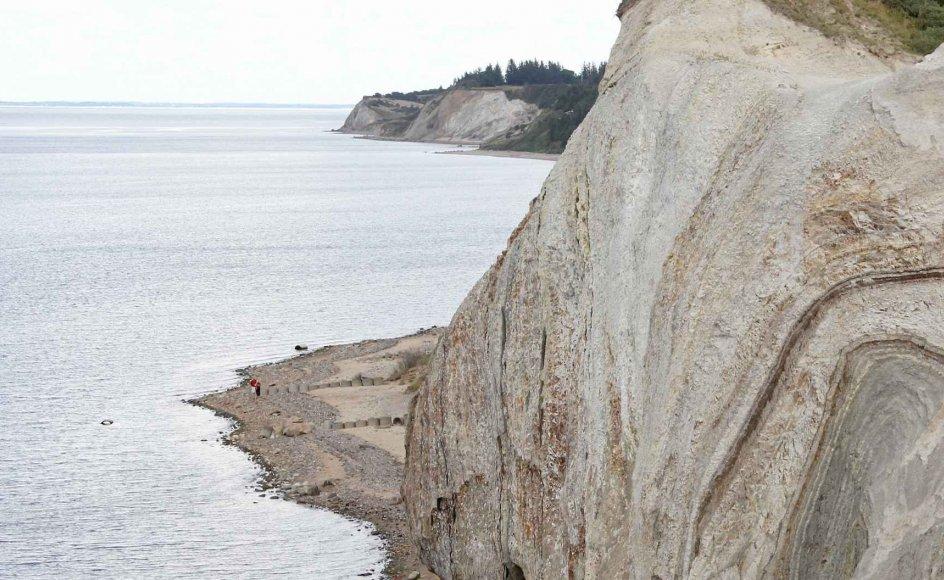 På den nordlige del af øen Fur i Limfjorden ligger Knudeklint, som sammen med Hanklint på øen Mors skal indstilles til en plads på den prestigefyldte Unesco-liste over verdensarv på grund af klinternes indhold af moler. –