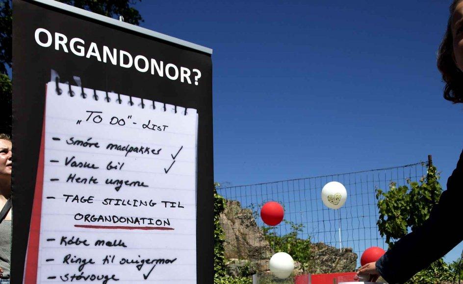 En holdningsundersøgelse fra Sundhedsstyrelsen fra 2015 viser, at 80 procent af alle danskere har en positiv holdning til organdonation. 65 procent af danskerne svarede, at de var villige til at donere egne organer i tilfælde af hjernedød. Billedet er fra Folkemødet.