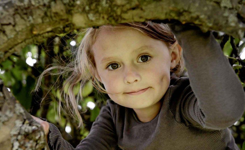 Det er to år siden, Esther Heidelbach fik transplanteret en ny lever. Nu er hun fire år, og familien er ved at lære at leve livet igen med kronisk sygdom. – Begge fotos: René Schütz/ritzau.