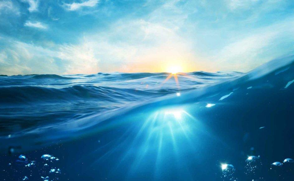 Antallet af mennesker, der vælger kirkegården fra, er vokset. Og flere ønsker havet, som det sidste hvilested.