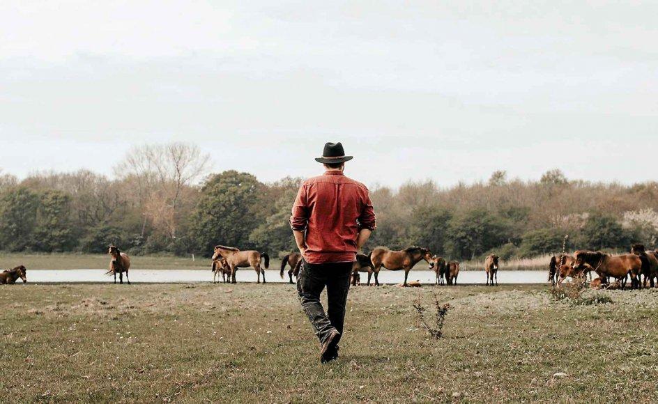 Max Staal Dinesen elsker at arbejde i naturen. Som ansat i Naturstyrelsen holder han opsyn med de vilde heste på Sydlangeland.