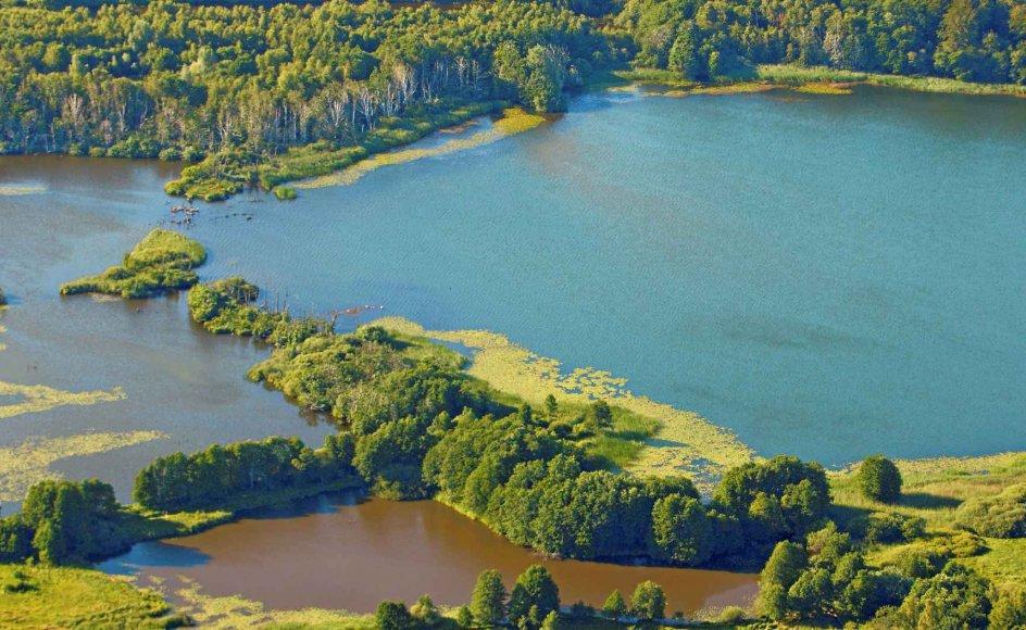 Esrum Sø er en del af Nationalpark Kongernes Nordsjælland, der indvies i dag. –
