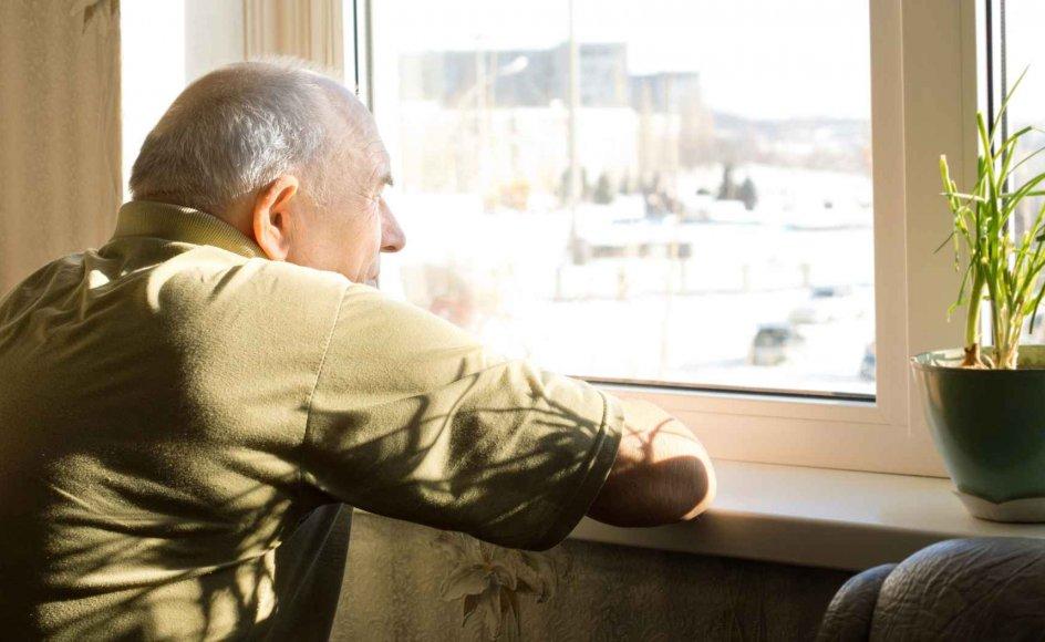 Ny dansk forskning viser, at ensomme hjertepatienters risiko for at dø af sygdommen, er dobbelt så stor som patienter, der ikke føler ensomhed.