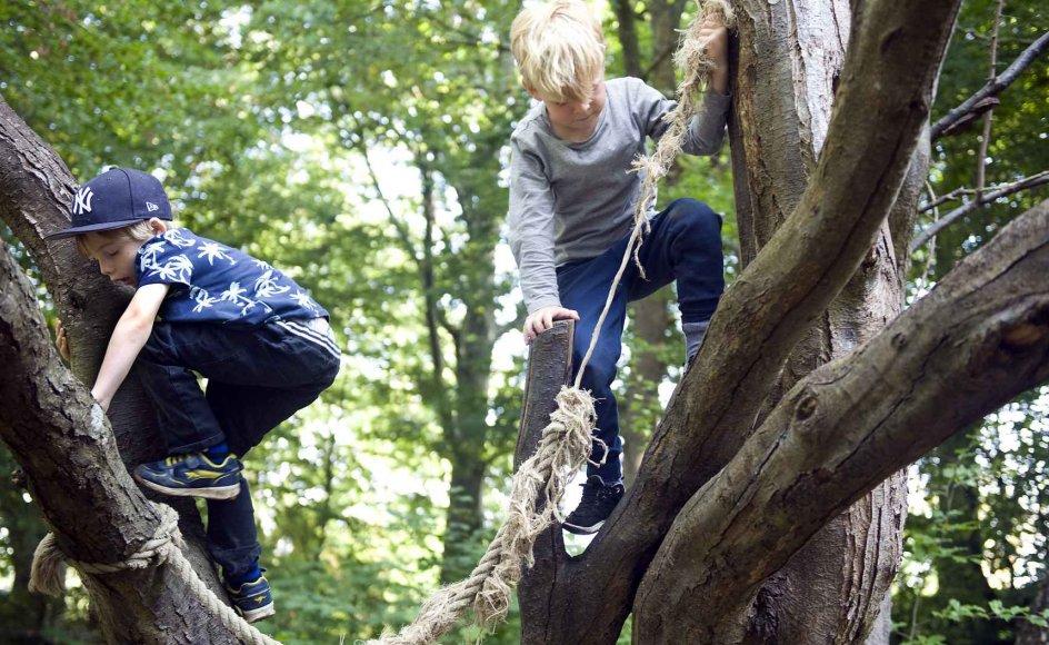 """På institutionen Gadevang Asyl i Hillerød klatrer børnene blandt andet i høje træer og """"leger aber"""". Oppe i de højere luftlag kan de desuden også svinge sig i et tyndslidt reb. –"""