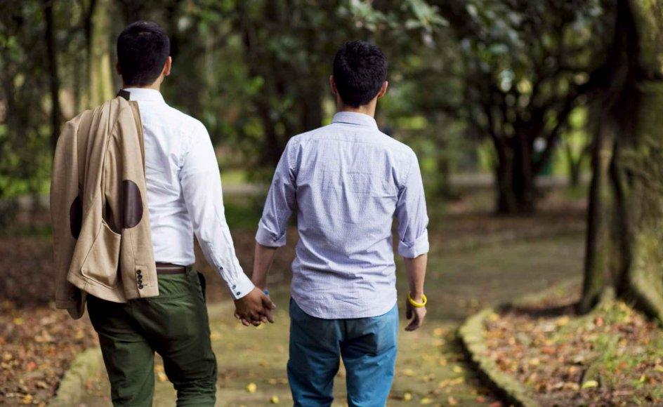 Indiens højesteret har i den forgangne uge ophævet forbuddet mod seksuelt samkvem mellem homoseksuelle.
