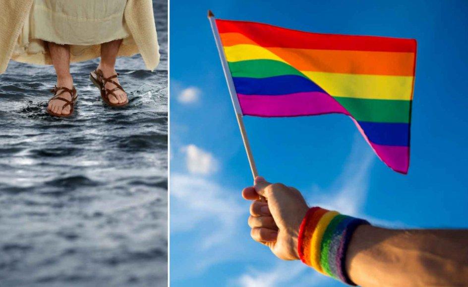 De syv kirkelige organisationer, der er gået sammen om at bremse LGBTQ-bevægelsen, glemmer, at seksuelle minoriteter og personer med ikke-binære kønsidentiteter er forfulgte og bliver diskrimineret, skriver journalist.