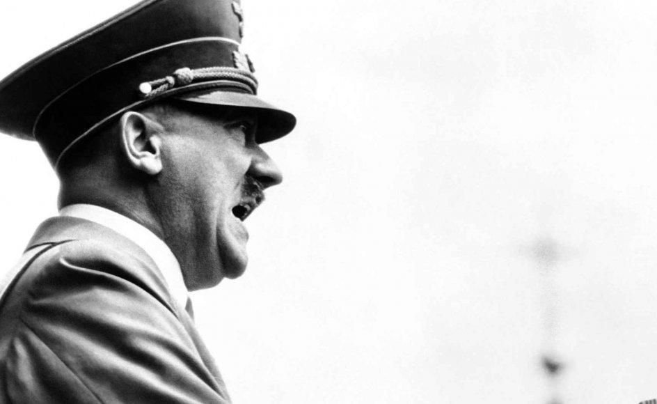 For 20 år siden kom brødrene i fokus, da den britiske historiker David Gardner afslørede, at der stadig levede mandlige familiemedlemmer til Adolf Hitler i USA.