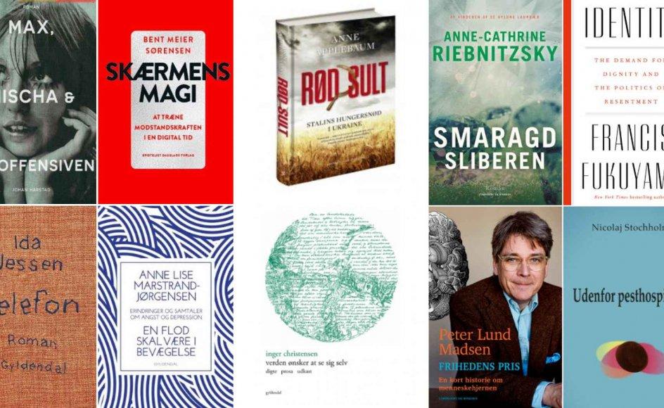 I årets løb skrev vi blandt mange bogartikler om Norge, hvis litterære miljø er intet mindre end sprudlende. Inden for alle genrer rykker det tilsyneladende deroppe, og den voldsomme energi, der blandt andet skyldes en udpræget regional sans hos forfatterne, smitter også af på det danske bogmarked.
