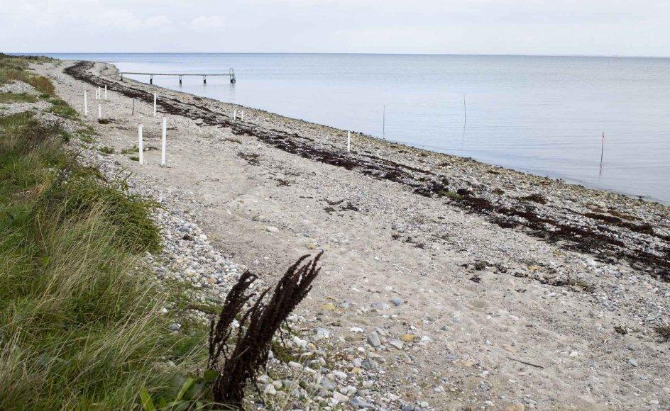 Årsagen til forureningen er, at Danfoss i perioden fra 1950 til 1967 med myndighedernes tilladelse deponerede affald fra virksomhedens produktion. Det har ført til fund af klorholdige dioxiner og senest det kræftfremkaldende stof vinylklorid ud for Himmark Strand.