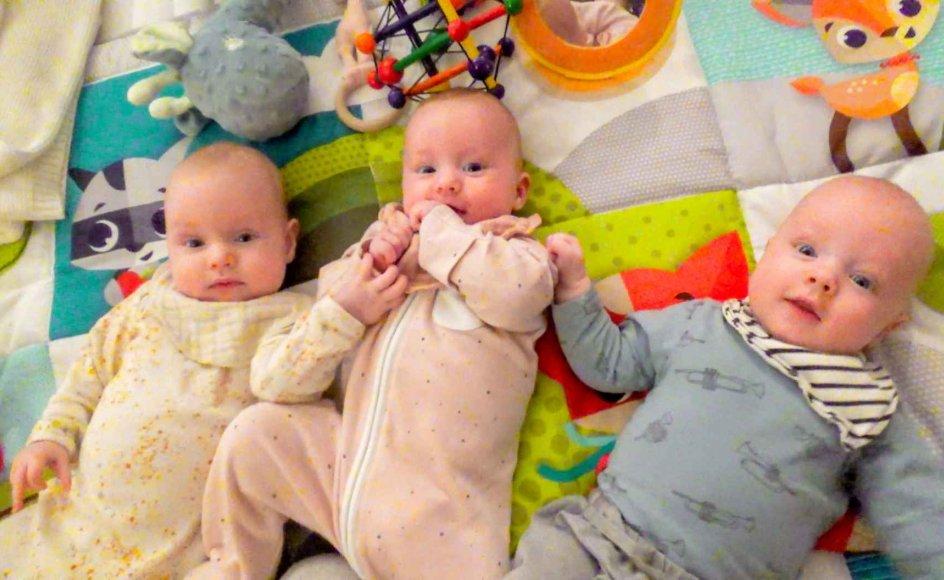 I Danmark fødes 10 sæt trillinger om året, og der er næppe nogen, der kan være i tvivl om, at de forældre får deres sag for, skriver Birgitte Stoklund Larsen.