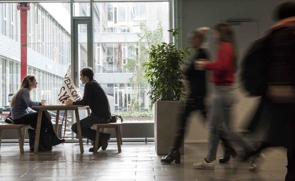 """""""Nu burde der ikke være mulighed for misforståelser. Medarbejdere og studerende ved præcis, hvad der skal ske ledelsesmæssigt i forhold til de her emner,"""" Ingrid Kryhlmand, der er næstformand i Hovedsamarbejdsudvalget på Københavns Universitet og fællestillidsrepræsentant for universitetets HK-ansatte. Arkivfoto,"""