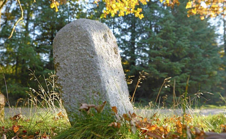 """""""Den findes den dag i dag. Kilometerstenen. Græsset gror grønt omkring den. Her er ingen spor overhovedet af det, der skete for 50 år siden"""", skriver hospitalspræst om sin søster, hvis død gjorde angsten til et vilkår i familien."""